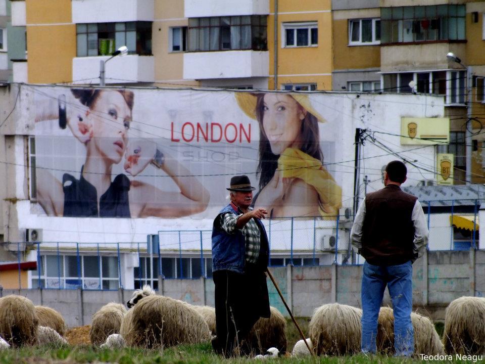 Sibiu- contraste