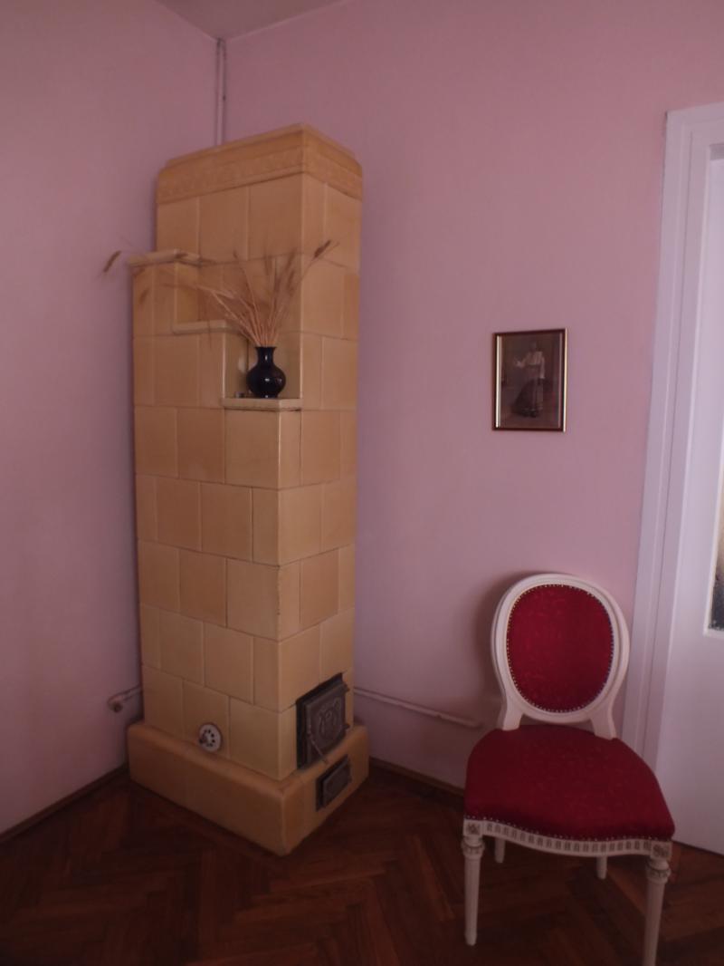 Casa Lucian Blaga Cluj 5