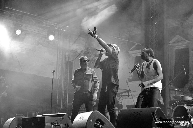 Electric Castle Festival 2015 (44)