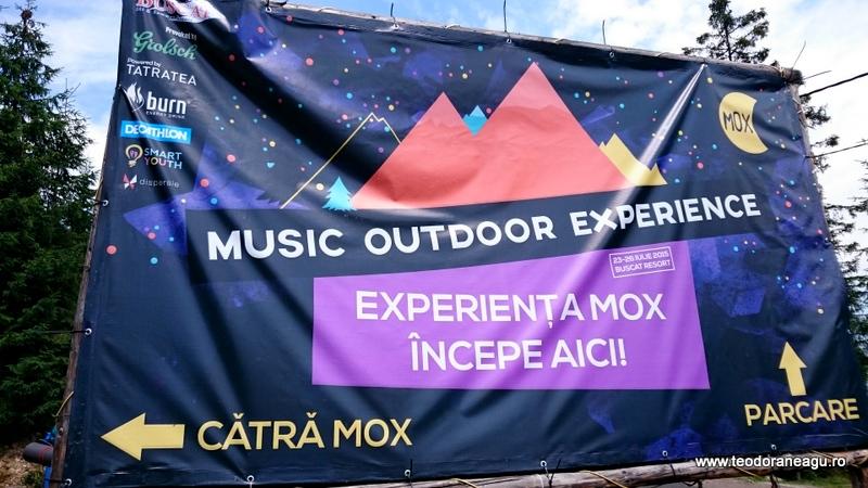 Mox2015 Baisoara Teodoraneagu.ro (51)